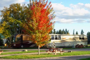 Cleanest, Best RV Park & Campground near Glacier : Spotless RV Park for all size rigs. Full-hookup options w/premium channels. Well landscaped, close to Flathead River & Lake, 20 mins to Glacier Park. RV supplies & Meat Shop.