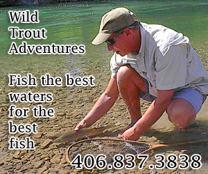 Wild Trout Adventures - angling around Glacier : Guided fishing trips on mountain lakes, the Swan and Flathead Rivers. We love introducing fly fishing to visitors, and showing families how much fun fishing can be, whether you are new to the sport, want to give it a try on your trip, or are an advanced angler.