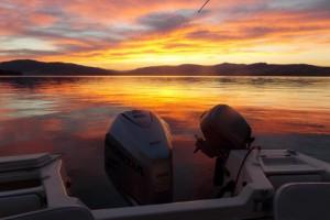 Wildhorse Boat Tours