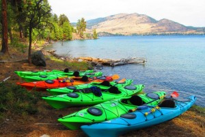 Sea Me Paddle Rentals - on Whitefish Lake
