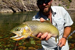 Glacier Anglers - Guided Fly Fishing & Fly Shop