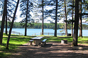 Book National Forest Campsites around Whitefish