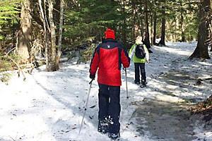 Glacier Adventure Guides - Snowshoe Treks