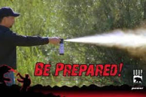Glacier Outfitters - rent BEAR SPRAY from us