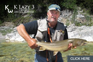 Fish for Native Bull Trout - K Lazy 3 Outfitters