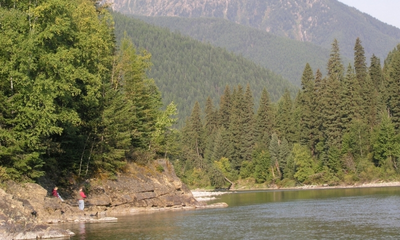 Flathead River Montana Fly Fishing Camping Boating