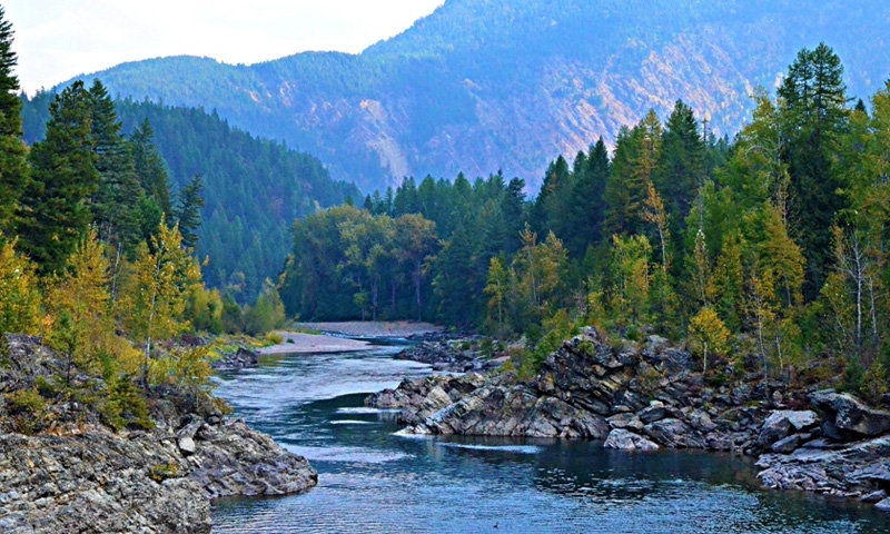 Middle fork flathead river montana fly fishing camping for Whitefish montana fishing